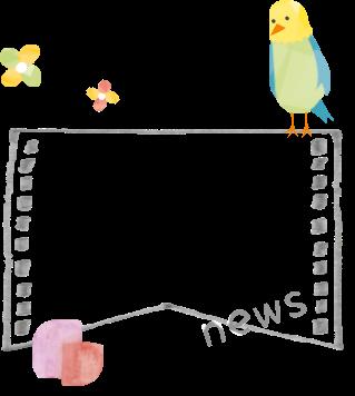 こらっせ保育園 お知らせ news